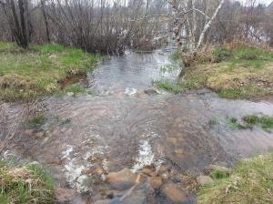 brook overflowing