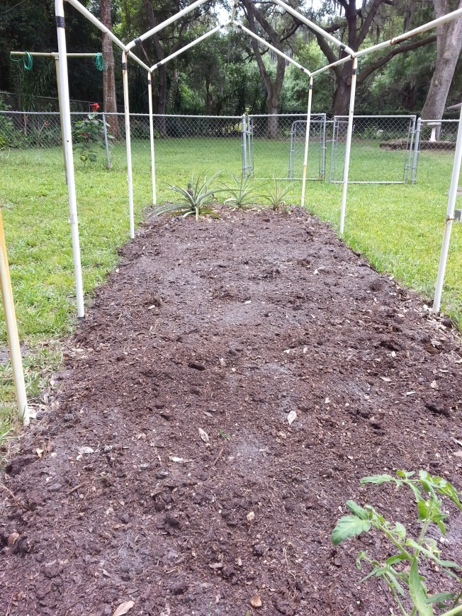 New, rich soil layer on this bed.