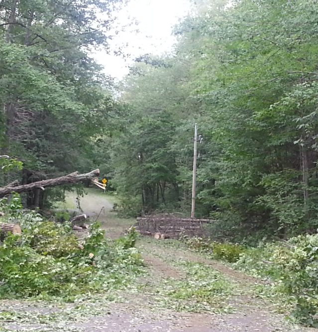 Many roads obstructed with fallen trees and utility poles.