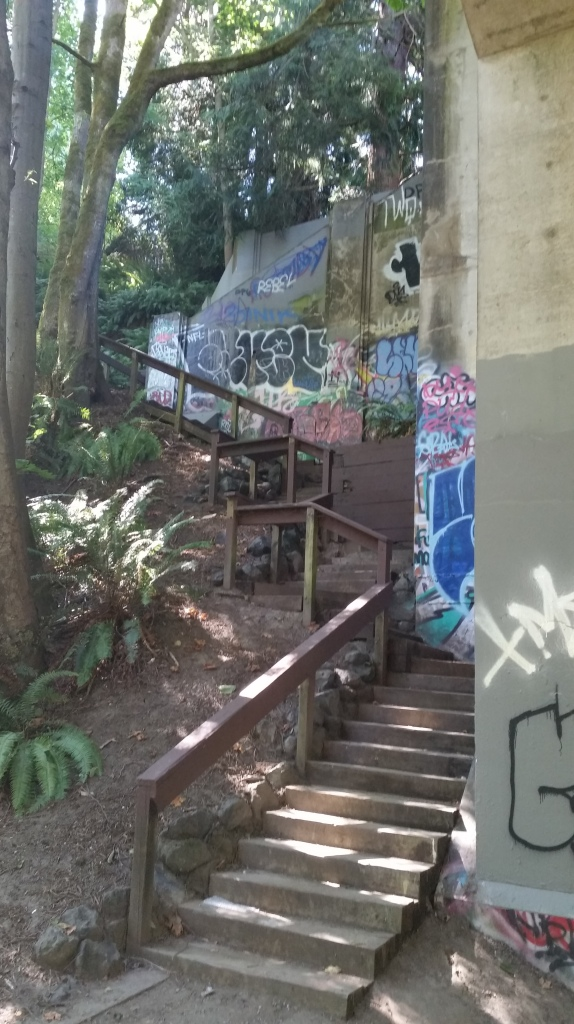 from Schmitz Park up to Admiral Street, 80 steps