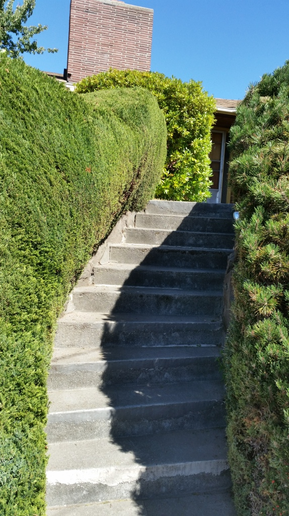 Nicely groomed staircase to someone's house