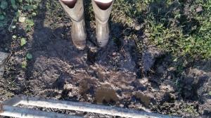 Take off muddy boots