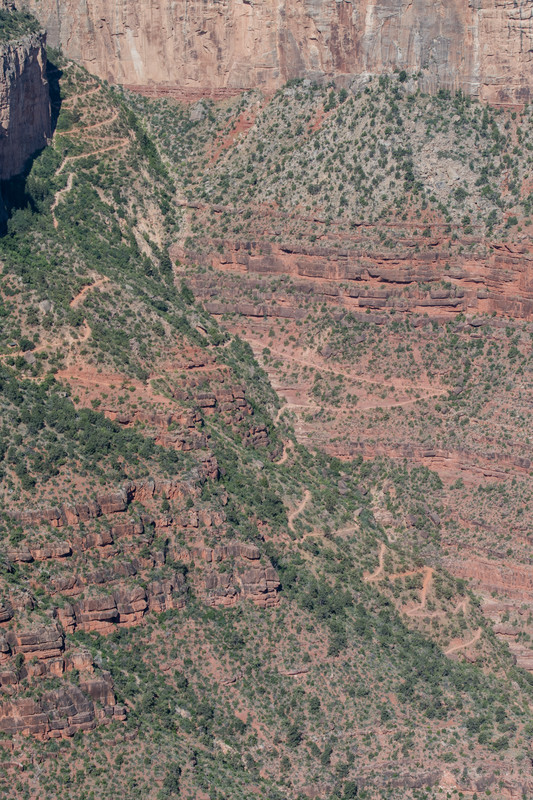 portion of Bright Angel Trail, Grand Canyon